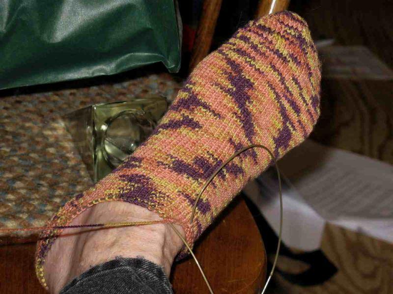 Corn sock