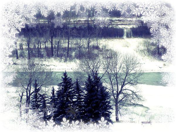 Snow scene Calgary