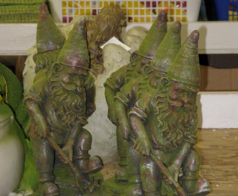 5 gnomes