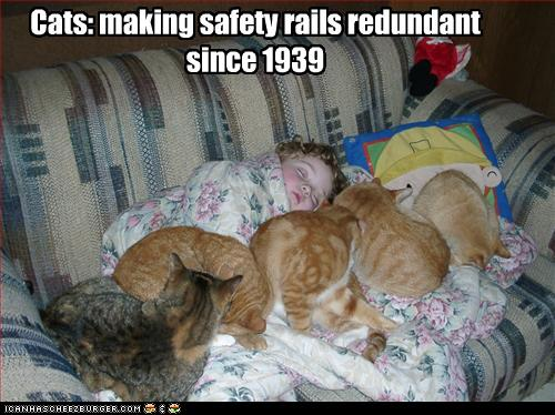 Lolcats-safety-rails