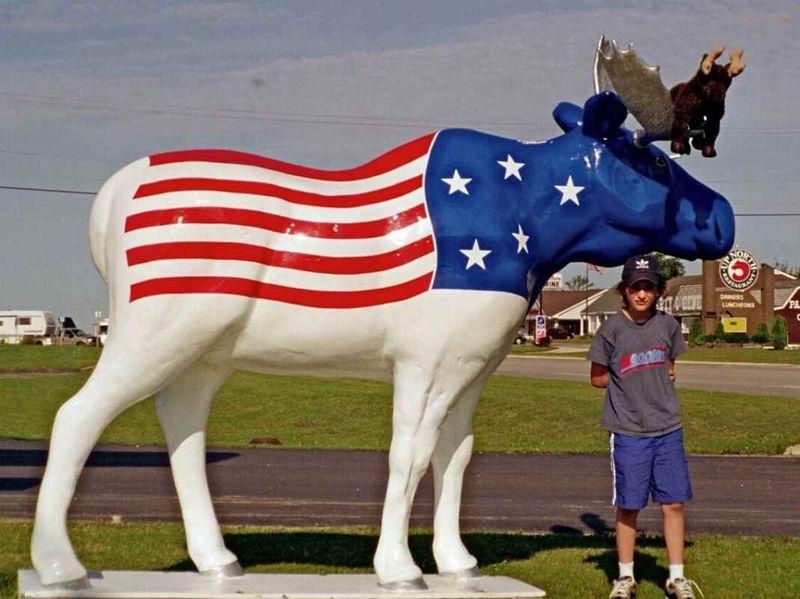 2002 w moose