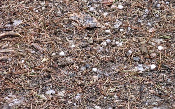 Fail hail ground