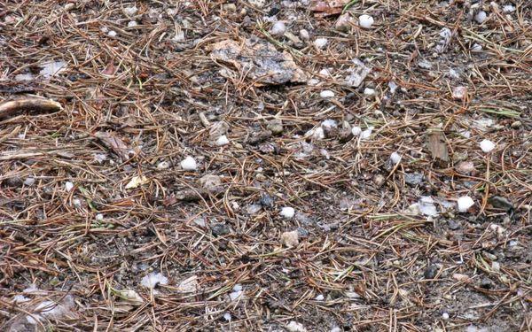 Fail hail ground