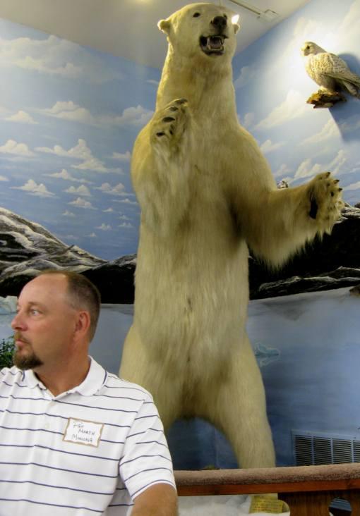 Kauk polar bear