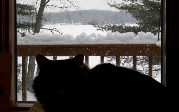 Snow railing