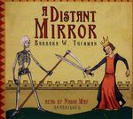 Distant mirror