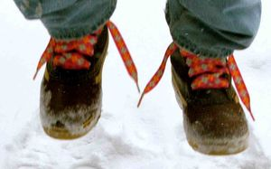 M shoes laces