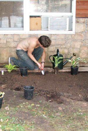 M planting