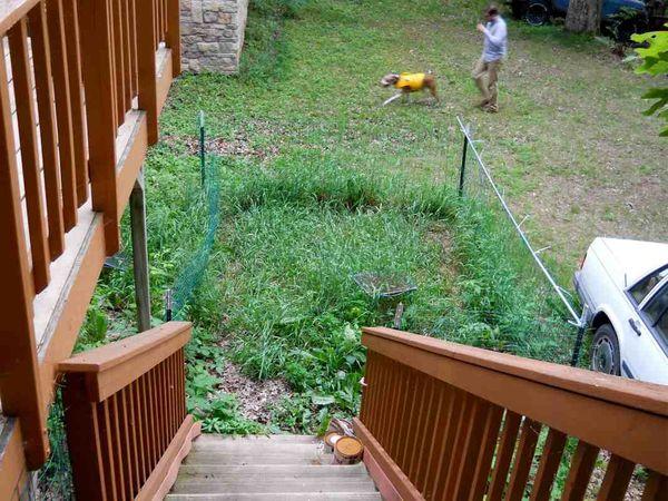 Poop yard 2