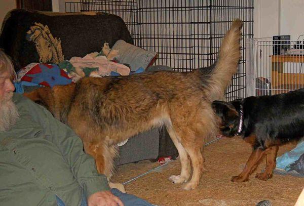 Keesha meets Lucy