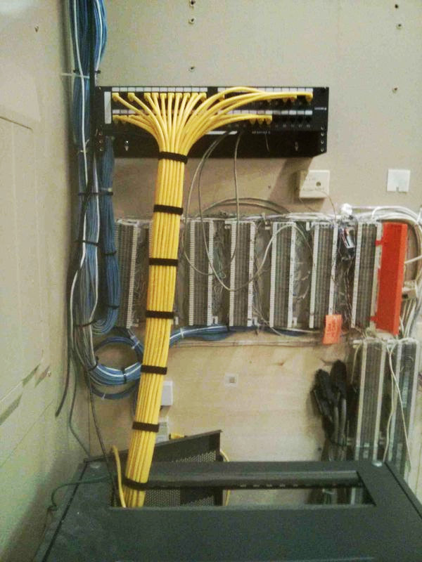 Managed cables