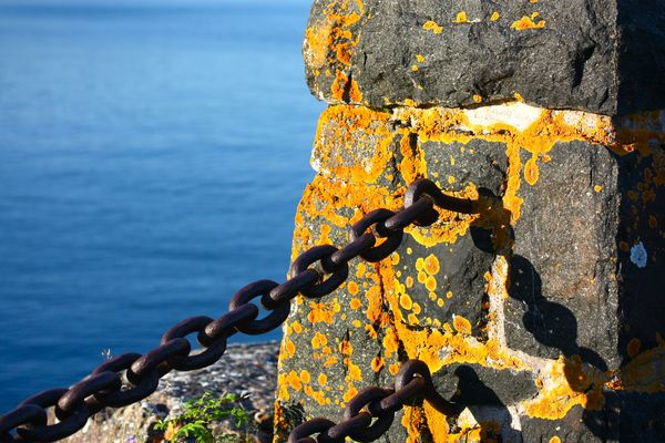 Superior chain