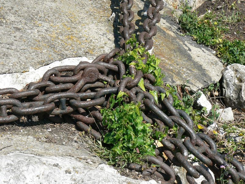Chains n weeds