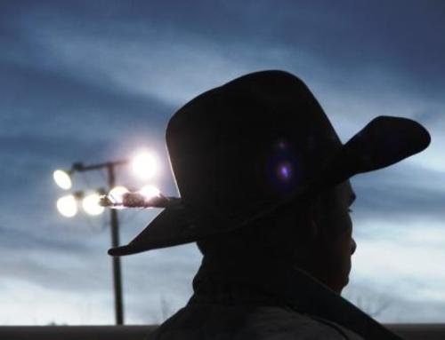 Rodeo_cowboy_silhouette