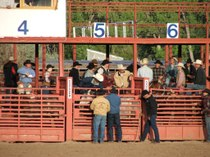 Rodeo_cowboys_gates
