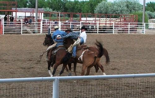 Rodeo_pickup_riders