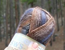 Patons_soy_wool_brown_blue