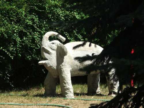 070807_elephant