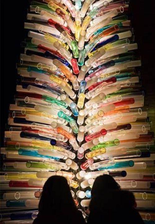 071217_tree_12